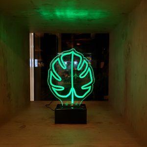 luminaria-costela-de-adao-bivolt | Wall Done