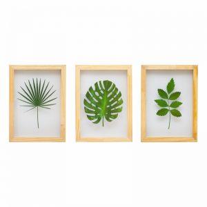 kit-quadros-plantas-walldone
