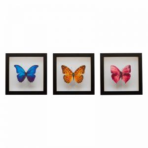 kit-quadros-borboletas-walldone