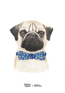 Pôster Aquarela Pug | Wall Done