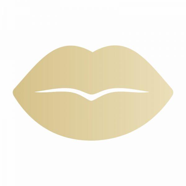 espelho-de-parede-boca-dourada| Wall Done