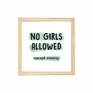 quadro-no-girls-allowed-moldura-pinus-walldone